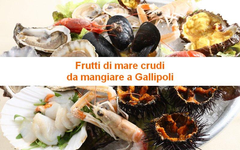 Frutti di Mare Crudi da Mangiare a Gallipoli